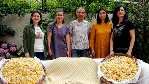 MKÜ işbirliğiyle geleneksel ipek böceği yetiştiriciliği