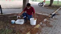 Minik Hayvanlara Yemek-Su