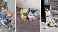 Çöp Toplanmayan  Sokaklar Tek Tek  Sıralandı