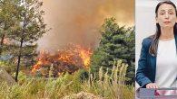 Yangın Neden Halen Kontrol Altına Alınamadı?