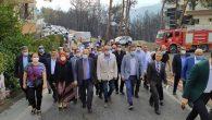 İyi Parti İl Başkanı A. Şefik Çirkin'in orman yangını mesajı: