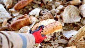 Antakya Belediyesi çağrısı: Ekmek İsrafına Son