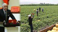 Tokdemir: Kırıkhan'da Teşvikten YARARLANDIRILMALI