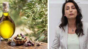 Yerli Zeytinyağı Üreticisi Desteklenmeli