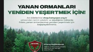 Yanan ormanlık alanın ağaçlandırılması için