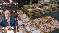 Antakya'ya modern balık pazarı