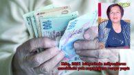 İktidar Emeklileri Görmezden Geliyor