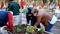 Şehit Mezarları Çiçek Bahçesine Dönüştürüldü
