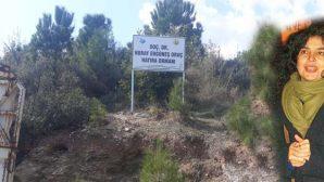 Doç. Dr.Oruç adına hatıra ormanı