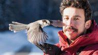 Kuş Dedektifi İş Başında