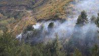Yaylacık'ta Orman Yangını