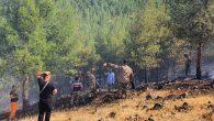 Aynı günde 4 orman yangını!