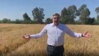 Yayman, hasat öncesi iyi verim ve fiyat diledi