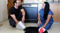 Hayvanseverler Ameliyat Ettirip Bakımını Üstlendi