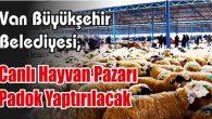 Canlı Hayvan Pazarı Padok Yaptırılacak