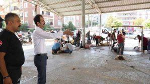Hatay'da 30 kişi kurban kesiminde yaralandı