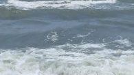 Samandağ Denizi ve  Çevlik'te 4-5 boğulma olayı