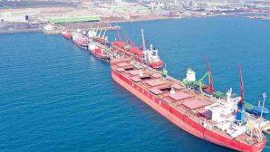 Tosyalı İskenderun Limanı Rekora İmza Attı