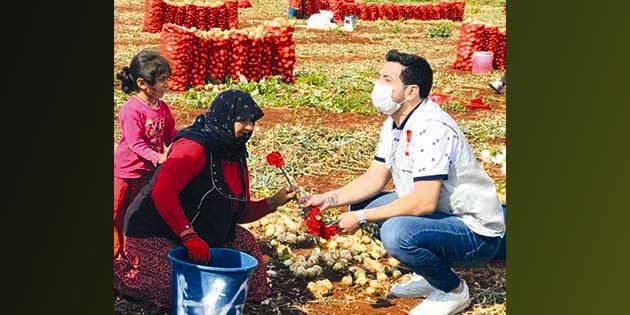 CHP'li Başkan tarlaya gitti, kadın çiftçilerin gününü kutladı