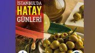 İstanbul'da Hatay günleri yarın başlıyor